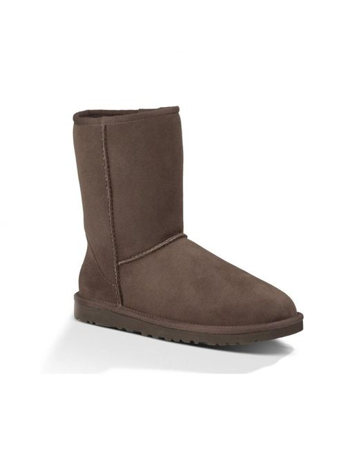 Ugg | Brown Classic Short Ladies Boot | Lyst