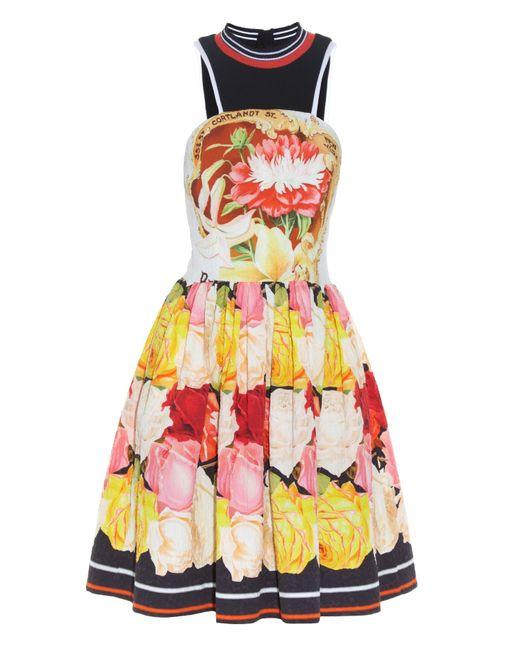 Mary Katrantzou | Multicolor Densis Rosa Alba-print Mini Dress | Lyst