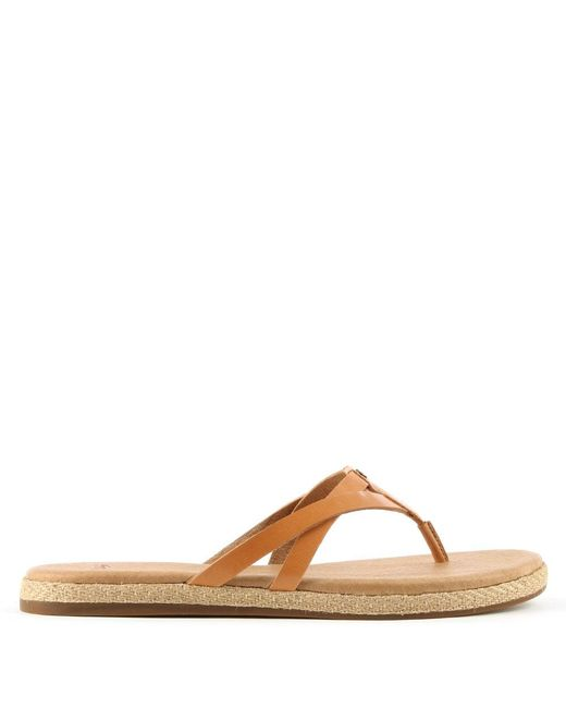 Ugg | Brown Annice Cafe Leather Toe Post Flip Flop | Lyst