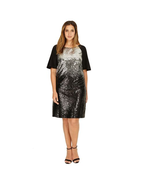 Studio 8 - Sizes 12-26 Black And Silver Halle Dress - Lyst