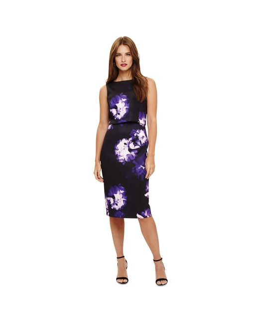 Phase Eight Blue 'jess' Floral Printed Dress