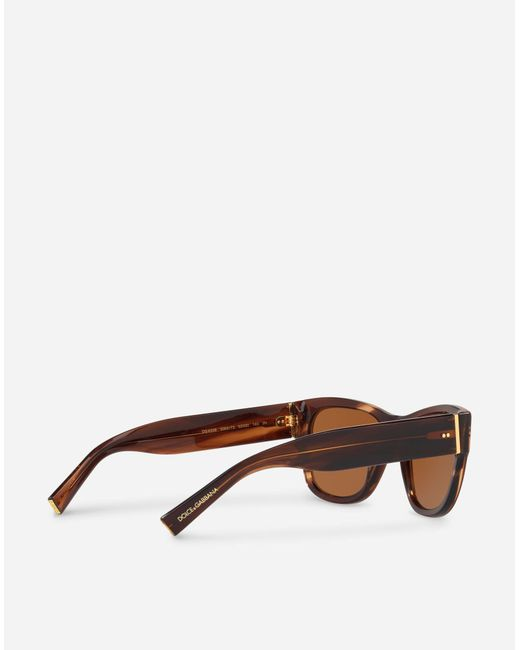 3ebd1829508 ... Lyst Dolce   Gabbana - Brown Domenico Sunglasses for Men ...