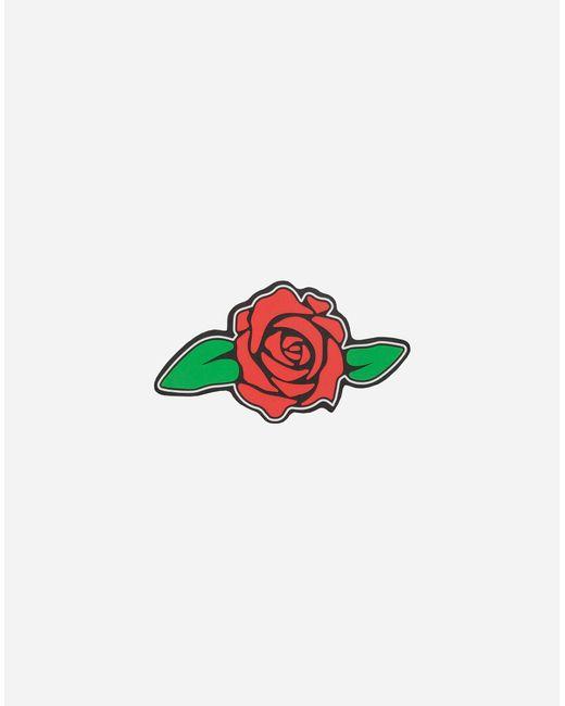 Rose di Dolce & Gabbana in Red