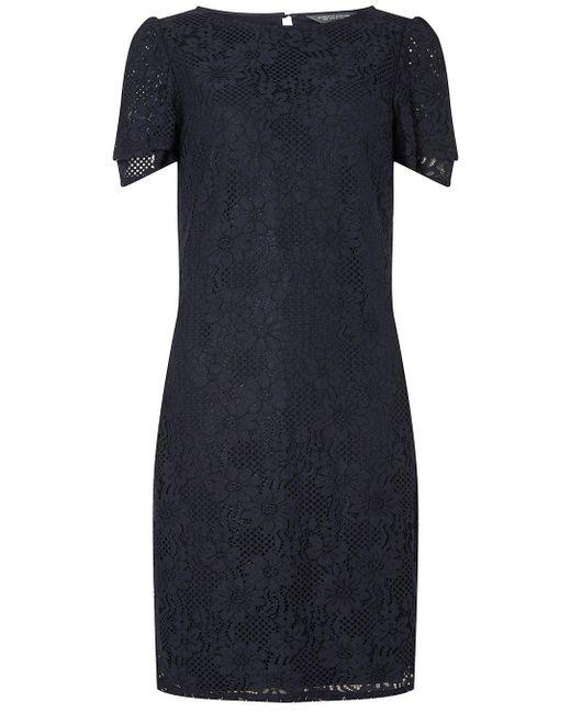 Dorothy Perkins - Blue Tall Navy Lace Shift Dress - Lyst