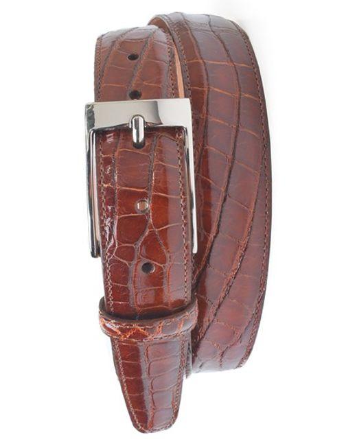 Martin Dingman | Brown 'joseph' Genuine American Alligator Leather Belt for Men | Lyst