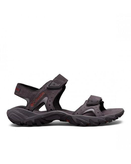 Sandalias de piel Santiam 2 Strap Columbia de hombre de color Gray
