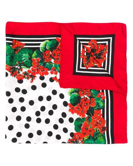 Dolce & Gabbana プリント スカーフ Red
