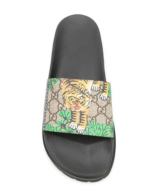 Gucci Tiger Shoes Mens