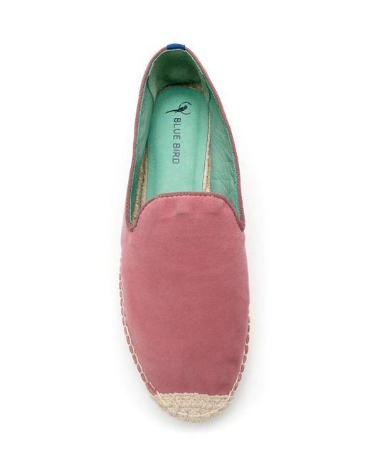 Blue Bird Shoes スエード エスパドリーユ Red