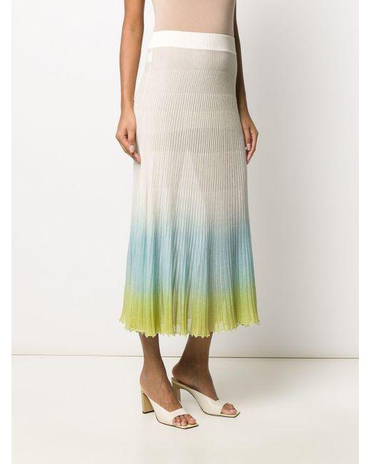 Jacquemus プリーツスカート Multicolor