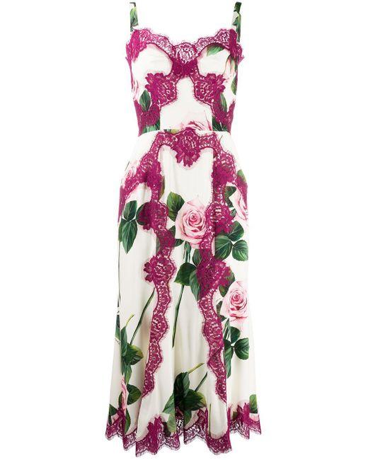 Dolce & Gabbana Rose レースドレス Multicolor