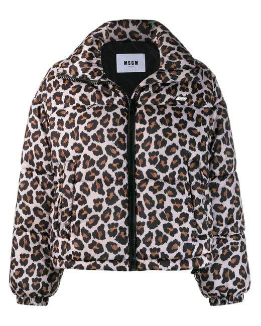 Куртка-бомбер С Леопардовым Принтом MSGM, цвет: Multicolor