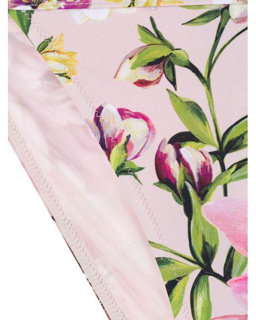 Dolce & Gabbana フローラル ビキニボトム Pink
