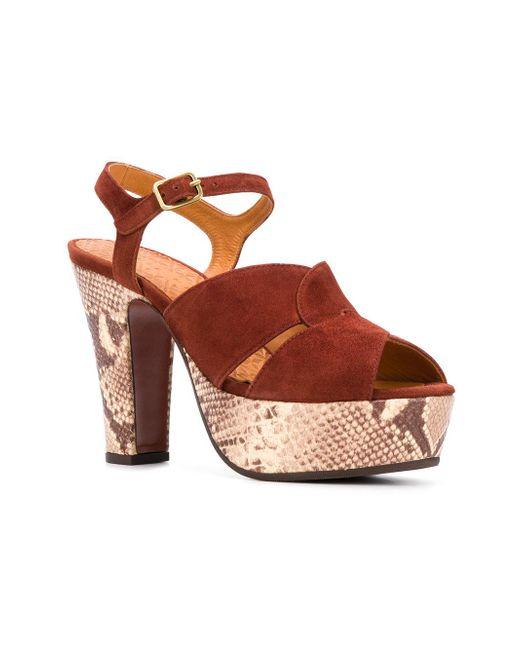 Chie Mihara Snake print sandals xAMsI