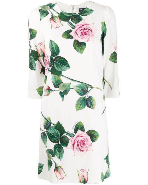 Dolce & Gabbana ローズプリント シフトドレス Multicolor