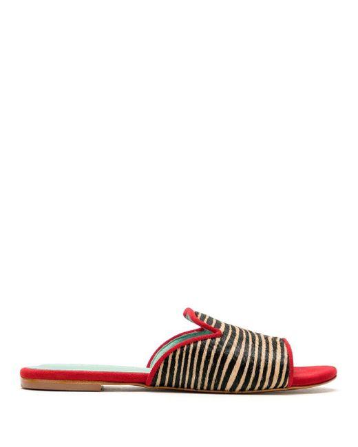 Blue Bird Shoes Zebra Print Slides Multicolor