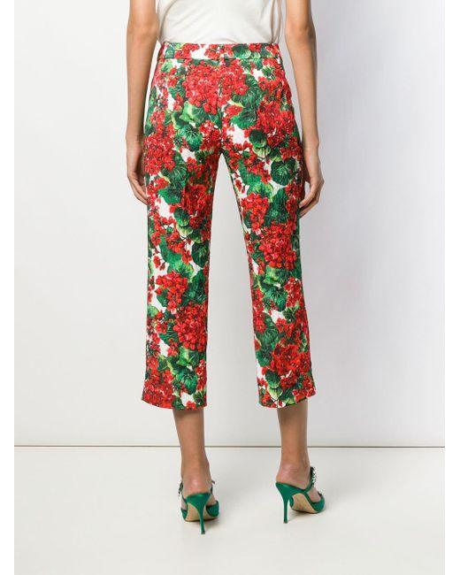 Укороченные Брюки С Цветочным Принтом Dolce & Gabbana, цвет: Red