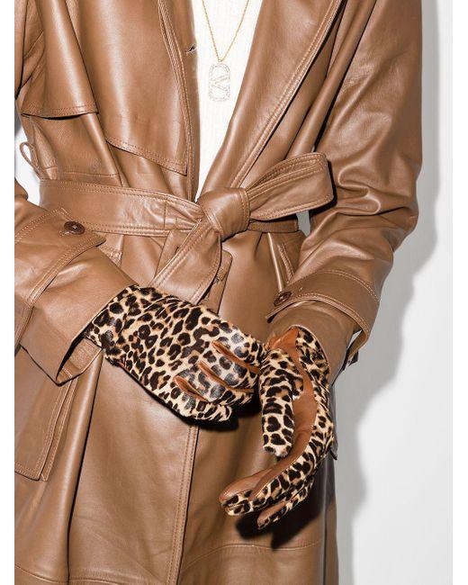 Перчатки Chloe С Леопардовым Принтом Agnelle, цвет: Brown