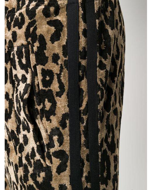 Спортивные Брюки С Леопардовым Принтом Roberto Cavalli для него, цвет: Black