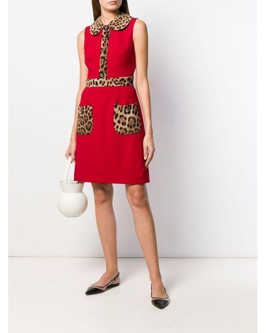 Расклешенное Платье С Леопардовым Принтом Dolce & Gabbana, цвет: Red