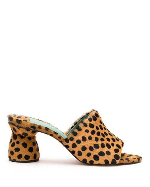 Blue Bird Shoes レオパード サンダル Brown