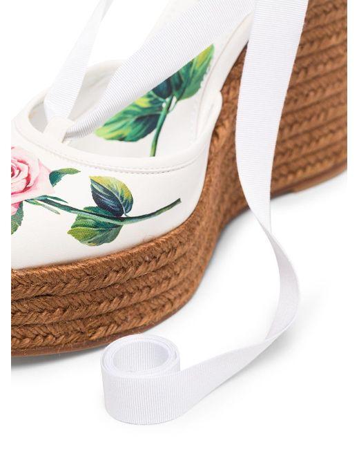 Dolce & Gabbana ローズプリント エスパドリーユ White