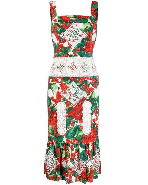 Dolce & Gabbana プリント レースドレス Multicolor