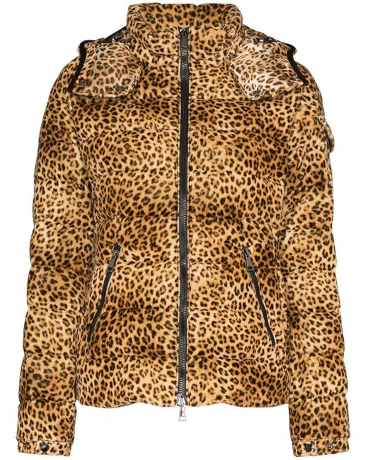 Moncler Bady Leopard ベルベットダウンジャケット Brown