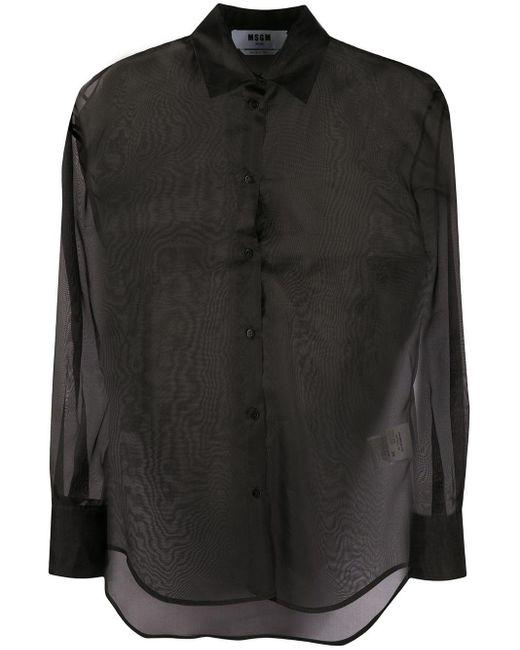 Camicia di MSGM in Black