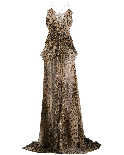 Etro Multicolor Leopard Print Sheer Maxi Dress