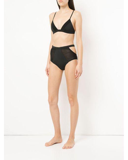 Haut de bikini Lennox Fella en coloris Black
