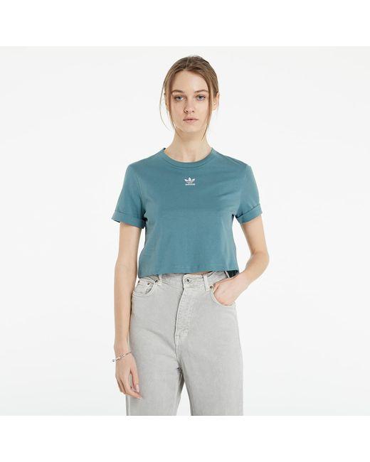 Adidas Originals Blue Adidas Adicolor Classics Roll-up Sleeve Crop Top Hazy Emerald