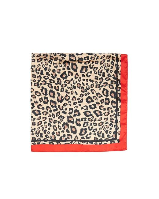 Forever 21 - Leopard Print Scarf , Brown/multi - Lyst