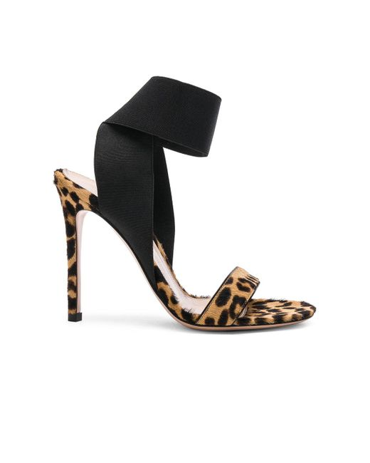 Gianvito Rossi - Black Calf Hair & Elastic Dionne Ankle Strap Sandals - Lyst