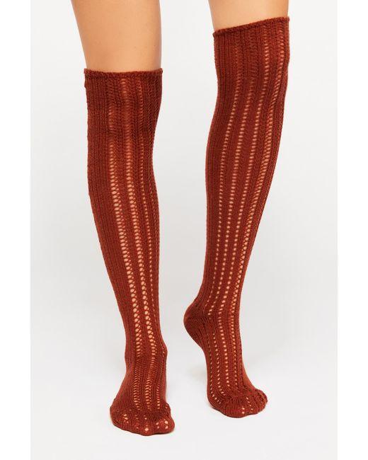 Free People - Orange Woodland Pointelle Over The Knee Socks By Memoi - Lyst