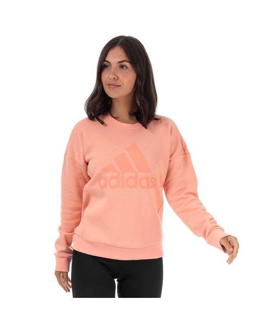 Adidas Pink Must Haves Bos Crew Sweatshirt