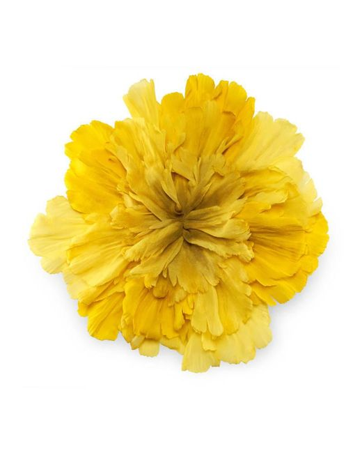 Gucci | Yellow Large Flower Brooch In Silk | Lyst