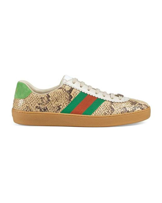 Gucci - Natural Python Web Sneaker for Men - Lyst