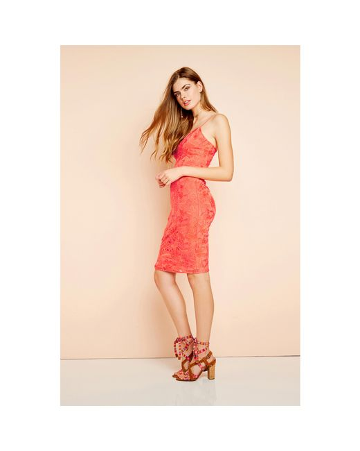 Guess | Pink Jillian Lace Dress | Lyst