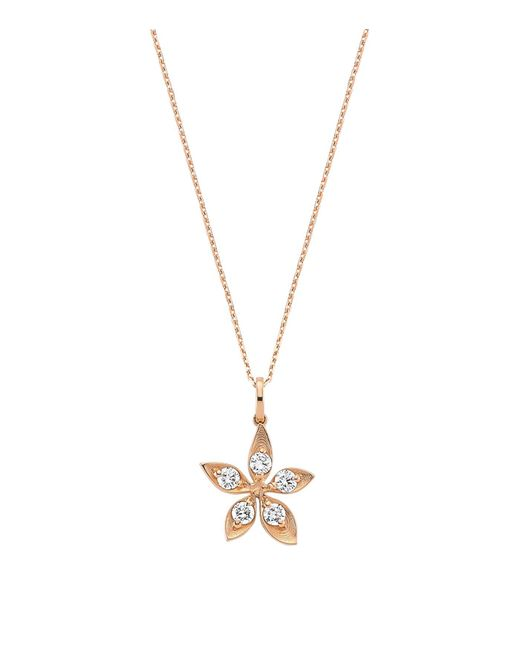 Bee Goddess | Metallic Diamond Apple Seed Necklace | Lyst