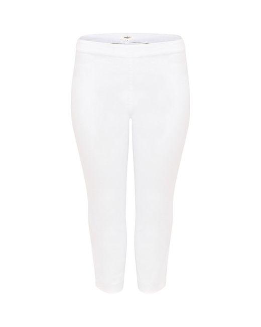 Studio 8 White Caz Crop Trouser