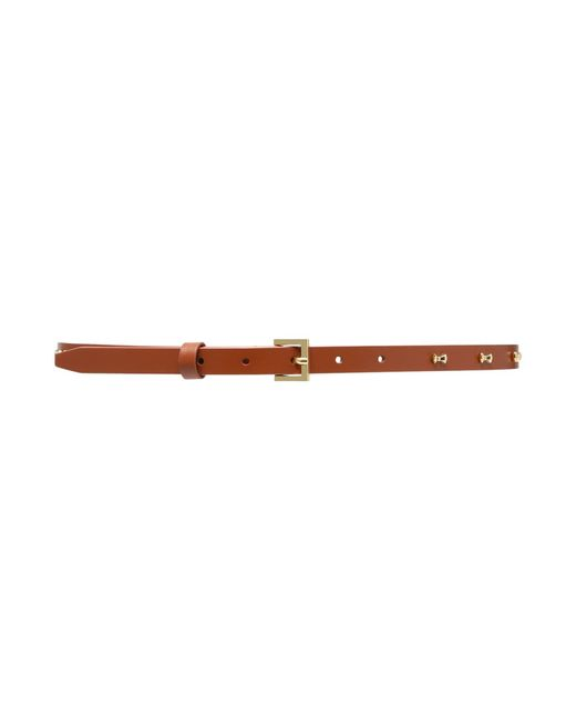 ted baker aileen brown micro bow belt in brown lyst
