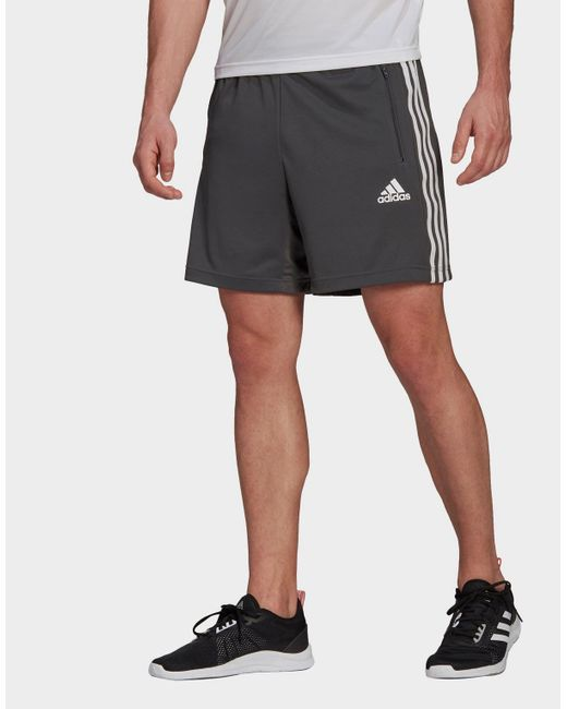 Adidas Gray Primeblue Designed To Move Sport 3-stripes Shorts for men