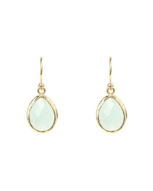 Latelita London Gold Petite Drop Earring Aqua Chalcedony dzwHB