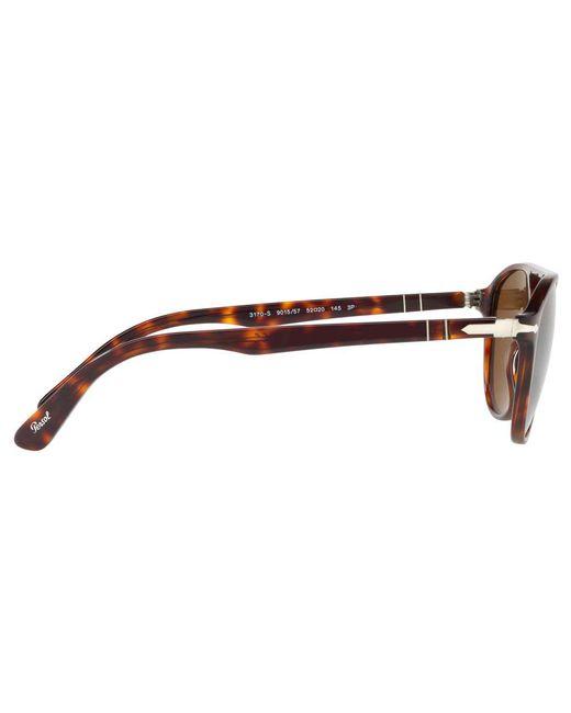 0a189e32804 ... Persol - Brown Po3170s Polarised Oval Sunglasses for Men - Lyst