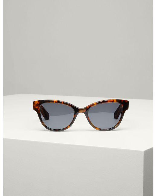 Westbourne sunglasses - Brown Joseph MApON