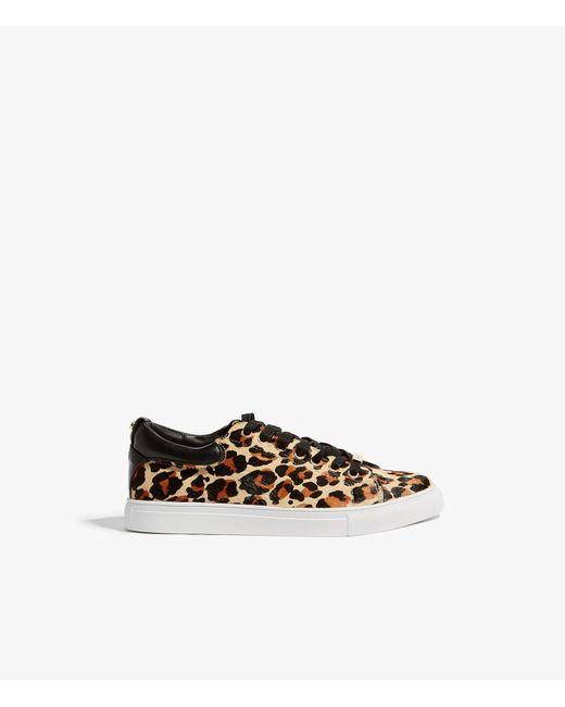 Karen Millen Women's Leopard Print Calf Hair Low Top Lace Up Sneakers tPkEFM