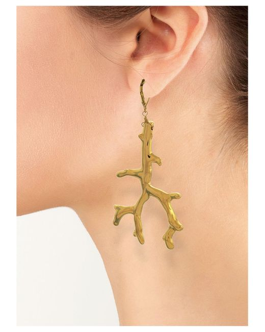Kenneth Jay Lane | Metallic Polished Gold Branch Eurowire Earring | Lyst