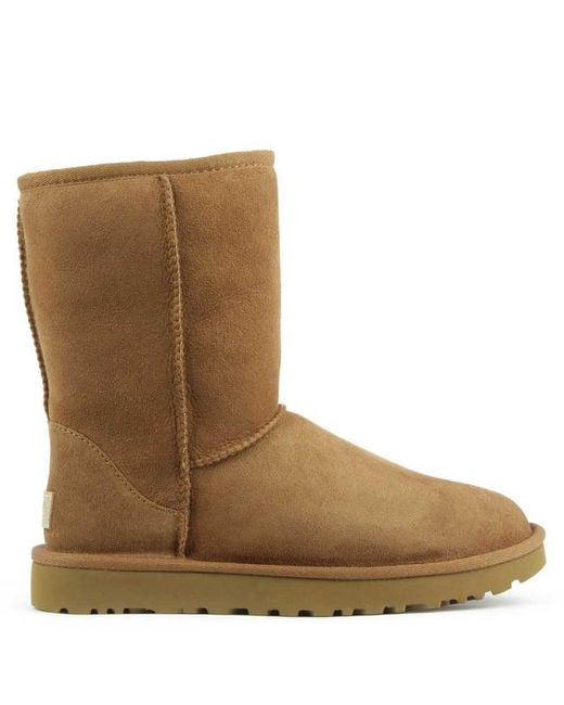 b5f7f56a635 Women's Brown Ugg Australia Classic Short Ii Chestnut Twinface Boot