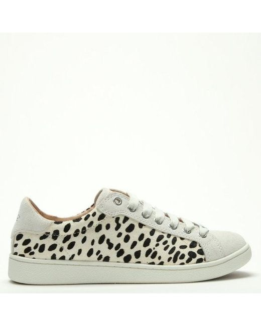 5dd7d0ee86f Women's Milo Exotic White Calf Hair Lace Up Trainers